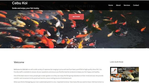 website-portfolio-headstartcms-com-cebukoi